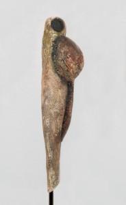 Callas MDIBL - Pregnant Larvae